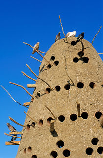 Traditional Egyptian Pigeon House von Sami Sarkis Photography