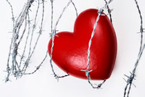 Heart shape surrounded with barbed wire by Sami Sarkis Photography