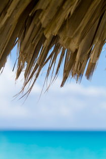 Edge of a sun umbrella straw with blue waters in the background von Sami Sarkis Photography
