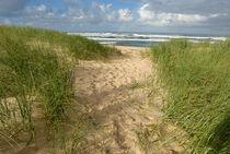 Path-beach-ocean-south-africa-alrf-saa-fna6780