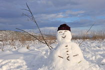 Snowman in snowfield von Sami Sarkis Photography