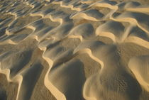 Pattern in desert sand by Sami Sarkis Photography