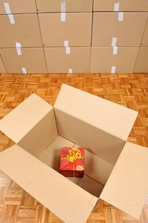 Wrapped gift box inside cardboard box von Sami Sarkis Photography