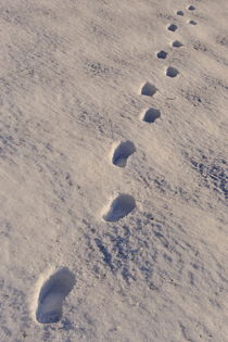 Footprints in snow von Sami Sarkis Photography