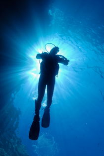 Silhouette of scuba diver rising to surface in sea von Sami Sarkis Photography