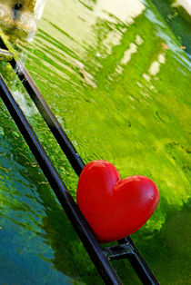 Heart shape in basin by Sami Sarkis Photography