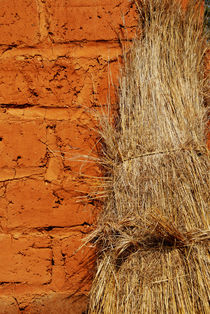 Straw drying against ochre wall by Sami Sarkis Photography