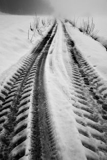 Vehicule tire tracks on hazy and snowy path von Sami Sarkis Photography