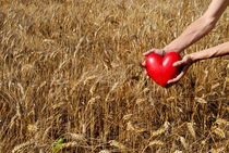 Woman in wheat field holding heart shaped object by Sami Sarkis Photography