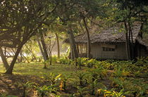 Rural wooden house behind trees by Sami Sarkis Photography