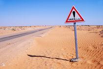 Flood warning sign on desert road von Sami Sarkis Photography