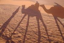 Men and camels shadows on sand dune von Sami Sarkis Photography