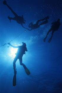 Scuba Divers silhouettes  by Sami Sarkis Photography
