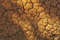 Cracks on dry ground in summer by Sami Sarkis Photography