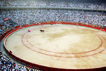 Rf-bullfighting-bullring-crowd-fiesta-pamplona-cor001