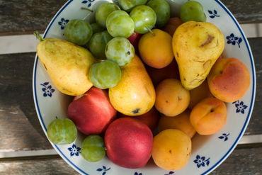Rf-bowl-choice-fresh-fruit-ripe-summer-variety-lan0211