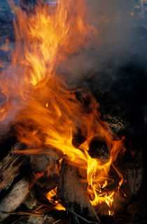 Rf-cooking-flames-traditional-vanuatu-vt257