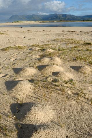 Sand-lake-south-africa-alrf-saa-fna6742