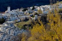Rm-andalusia-capileira-village-sunset-adl0773