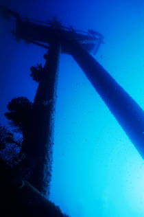 Looking up at the mast of the Dalton Shipwreck von Sami Sarkis Photography
