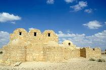 Ruins of Qasr Amra by Sami Sarkis Photography