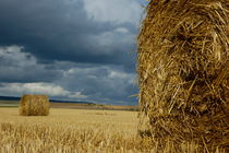 Hay bales in harvested corn field von Sami Sarkis Photography