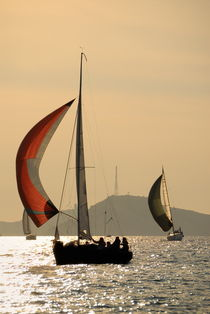 Rm-boat-frioul-archipelago-sailing-silhouetted-cpt0036