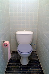 Full roll of pink toilet paper in the bathroom. by Sami Sarkis Photography