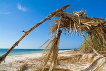 Rf-beach-built-structure-drift-wood-sea-cub0541