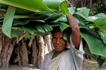 Woman holding banana tree leaves on her head von Sami Sarkis Photography