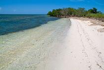 Rf-beach-cayo-jutias-cuba-idyllic-scenics-sea-cub0496