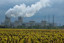 Rf-chimneys-drome-nuclear-smoke-vineyard-idy132