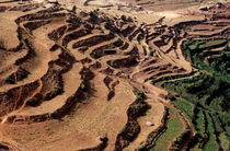 Terraced landscape of the slopes of the Atlas Mountains by Sami Sarkis Photography