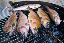 Trout being grilled on a hot barbeque. von Sami Sarkis Photography