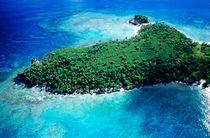 Rf-foliage-island-sea-tropical-vanuatu-vt280