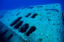 Rm-damage-decay-marseille-sea-shipwreck-underwater-uw284