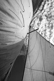 Rf-boat-clouds-sailboat-sailing-sky-yachting-mle518