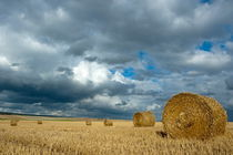 Rf-bales-farf-field-france-harvested-hay-bales-fra739