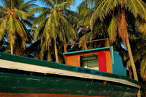 Colorful fishing boat surrounded by palm tress by Sami Sarkis Photography