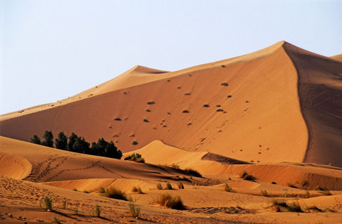 Rm-desert-morocco-the-great-merzouga-dune-mrc070