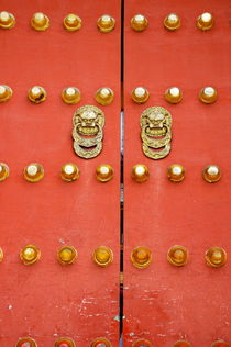 Heavy ornate door knockers on a gate von Sami Sarkis Photography