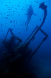 Diver exploring the Dalton Shipwreck with a school of fish swimming in the background by Sami Sarkis Photography
