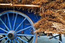 Blue cart carrying a full load of straw by Sami Sarkis Photography