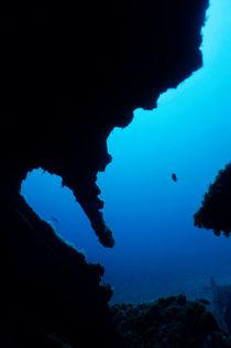 Rm-dalton-shipwreck-discovery-hull-marseille-uw280