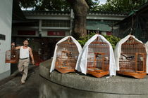 Market vendor selling caged birds von Sami Sarkis Photography