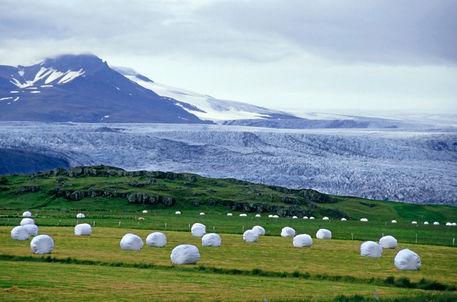 Rf-bales-glacier-jokulsarlon-lagoon-pastures-cor033