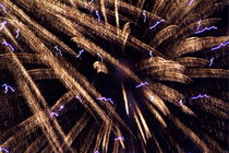 Fireworks light up the sky while celebrating Bastille Day by Sami Sarkis Photography