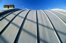 Curved zinc roof by Sami Sarkis Photography