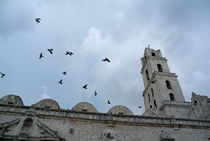 Birds flying above the basilica and the monastery of Saint Francis of Assisi (Basilica Menor de San Francisco de Asis) in Havana von Sami Sarkis Photography