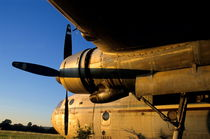 Rm-airplane-decay-propeller-rusted-sunset-aer001